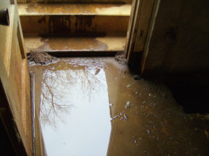 Interior Drainage for Basements and Crawlspaces